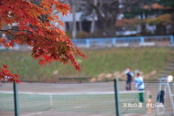 17 沼田公園 11月_020(S).jpg