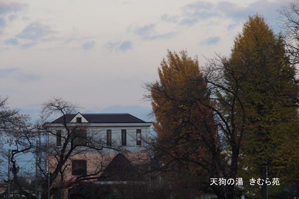 17 沼田公園 11月_033(S).jpg