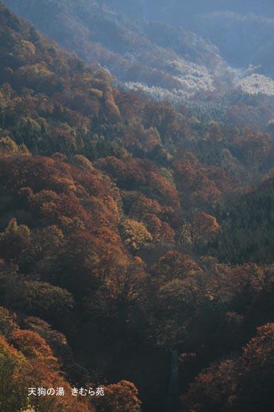 4 裏見の滝 11月_047(S).jpg