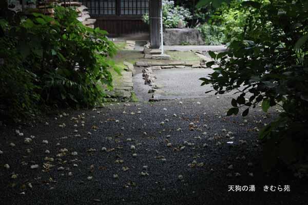 泰寧寺 7月_105(S).jpg