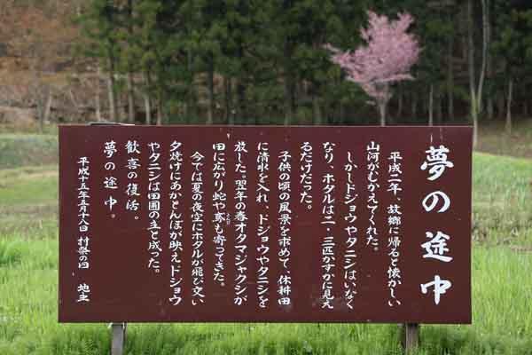 明川 5月_002(S).jpg