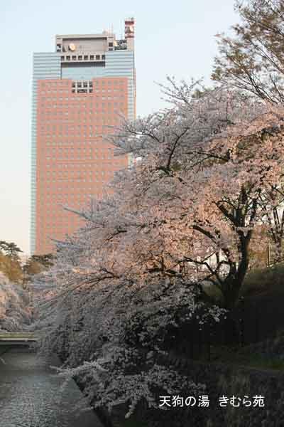 前橋 4月_093(S).jpg