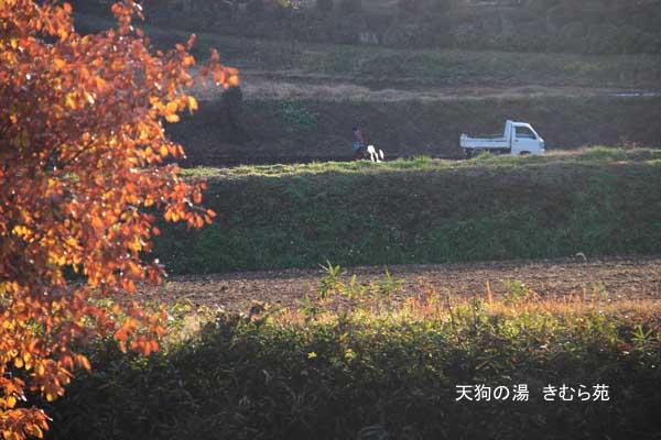 川場 11月_031(S).jpg