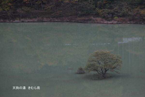 藤原 11月_002(S).jpg