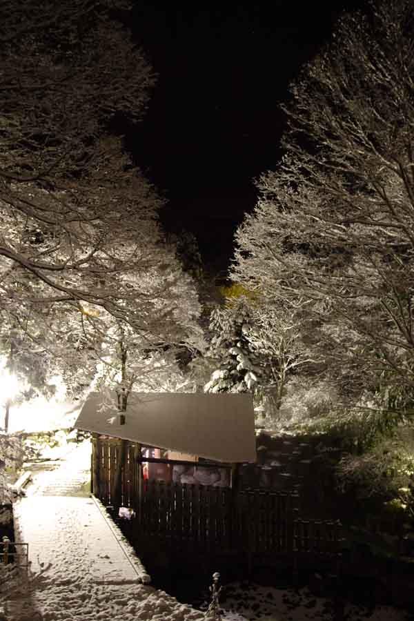 きむら苑/露天風呂/雪の夜