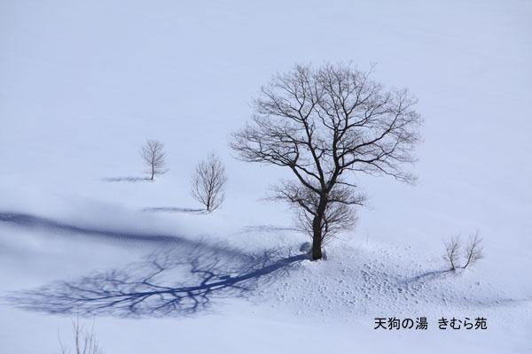16 藤原 2月_011(S).jpg