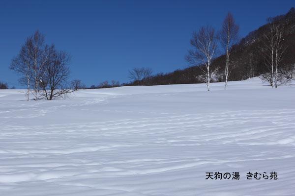 16 藤原 2月_037(S).jpg