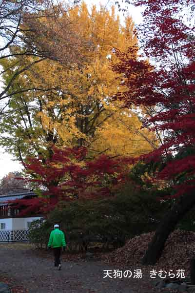 17 沼田公園 11月_004(S).jpg