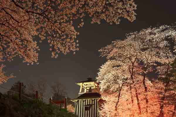 沼田公園 4月_082(S).jpg