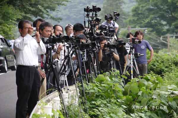 鉄道写真 6月_003(S).jpg