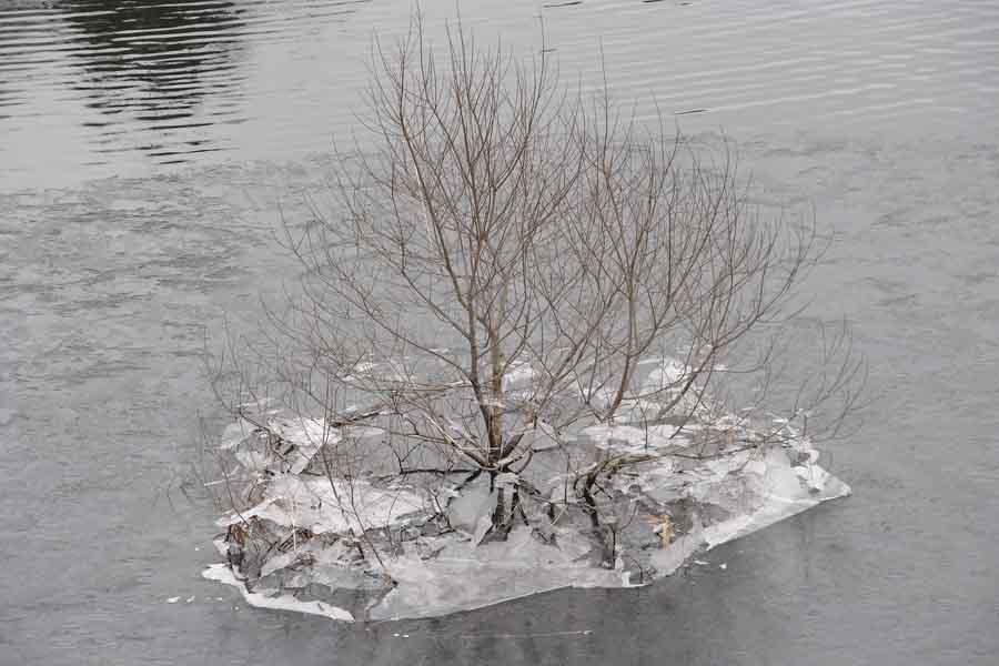 藤原湖 09年2月