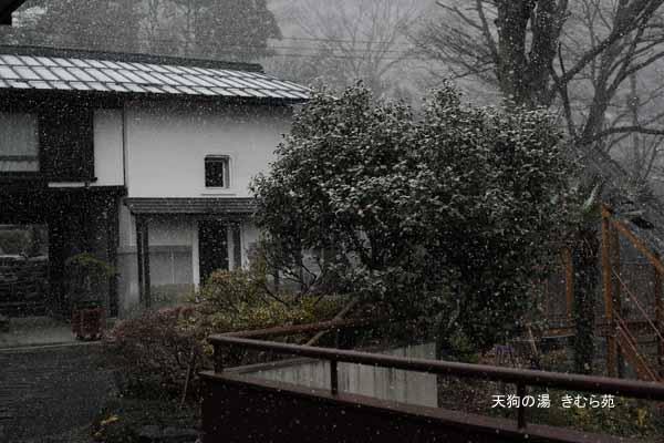 周辺 12月_012(S).jpg