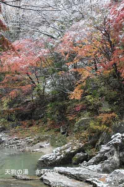 諏訪峡 11月_024(S).jpg