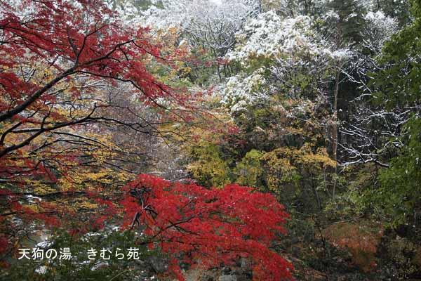 諏訪峡 11月_130(S).jpg